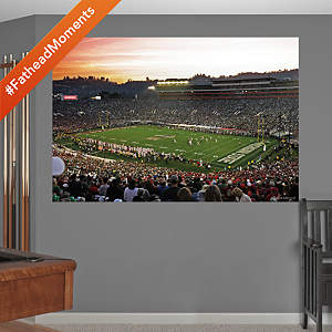 Michigan State Spartans - 2014 Rose Bowl Mural Fathead Wall Decal
